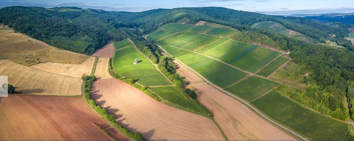 Wijngenootschap Rheingrafenberg