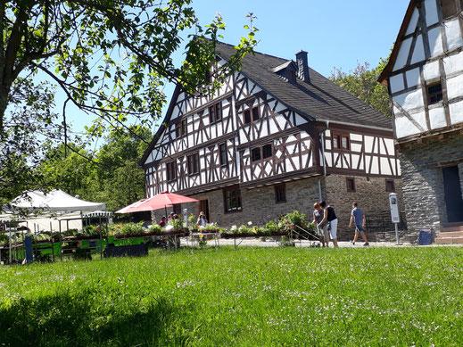 Openluchtmuseum van het Rijnland Pfalz
